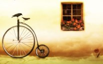 bike-and-window-17781